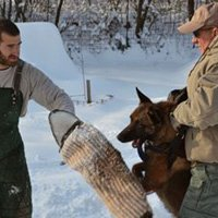 Our K9s are hand-selected in one-on-one sessions